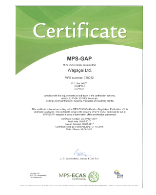 MPS-GAP Wagagai Ltd.