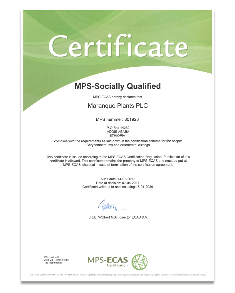 MPS-SOCIALLY QUALIFIED