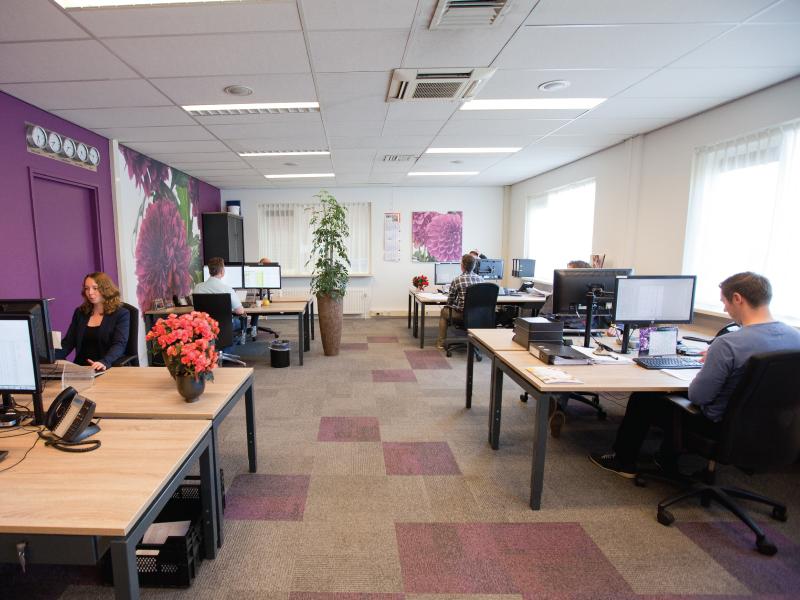 Productieplanner Siergewassen (fulltime) M/v