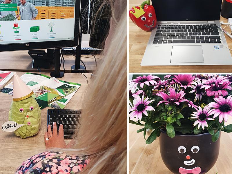 Beekenkamp Plants Deelt Inspiratie Voor #MeetMyWilson Initiatief Met Groenten En Planten
