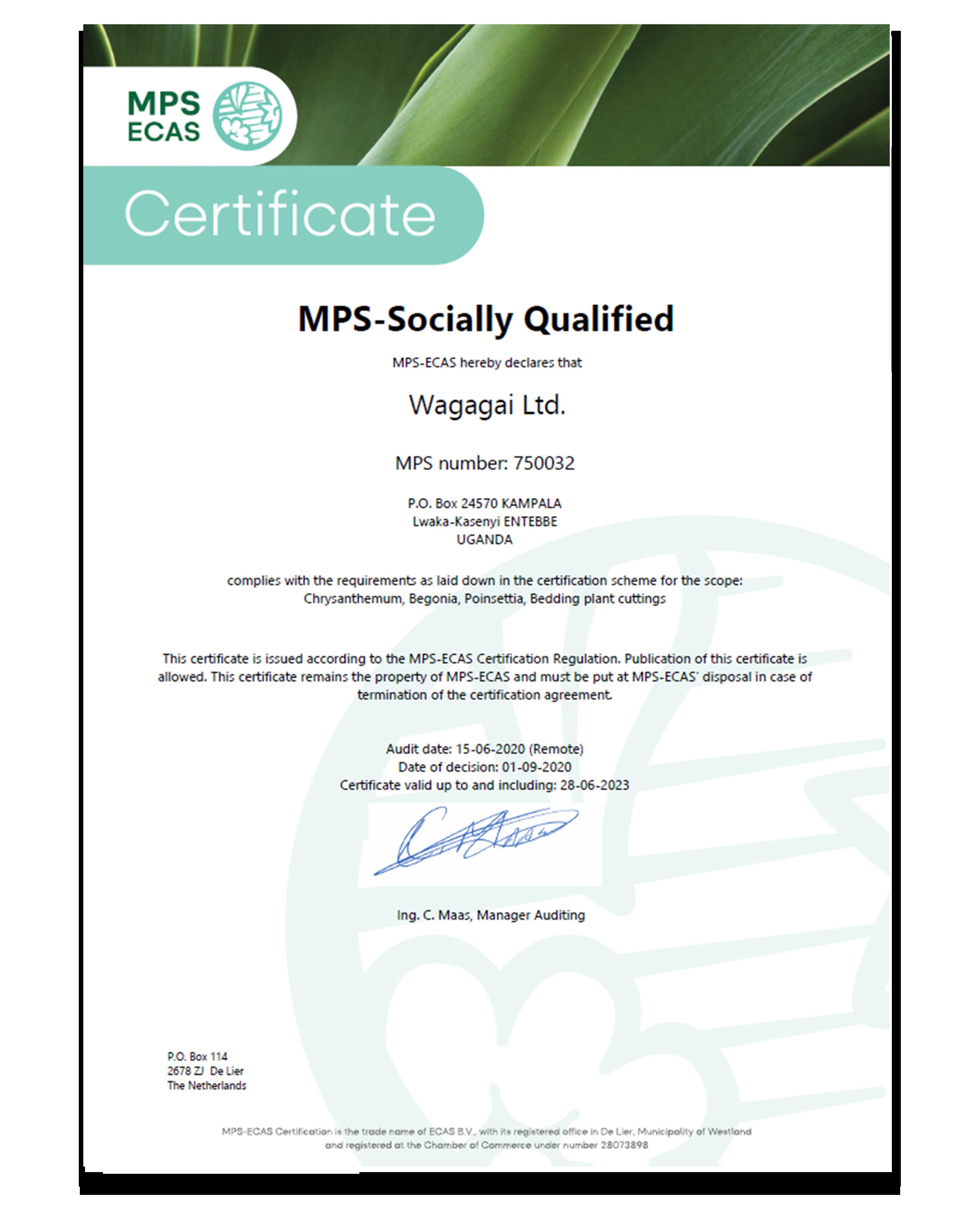 MPS-SQ Wagagai