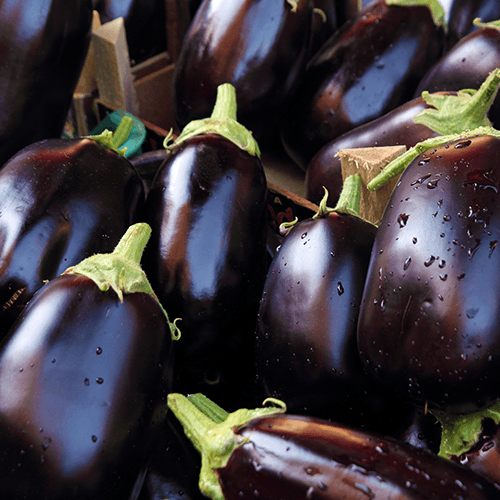 Aubergines (Egg plants)
