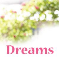 Begonia Dreams