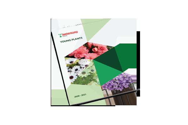 Pot & Bedding Plants (NIEUW)