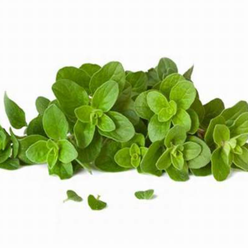 Herbs From Cutting Diabolo