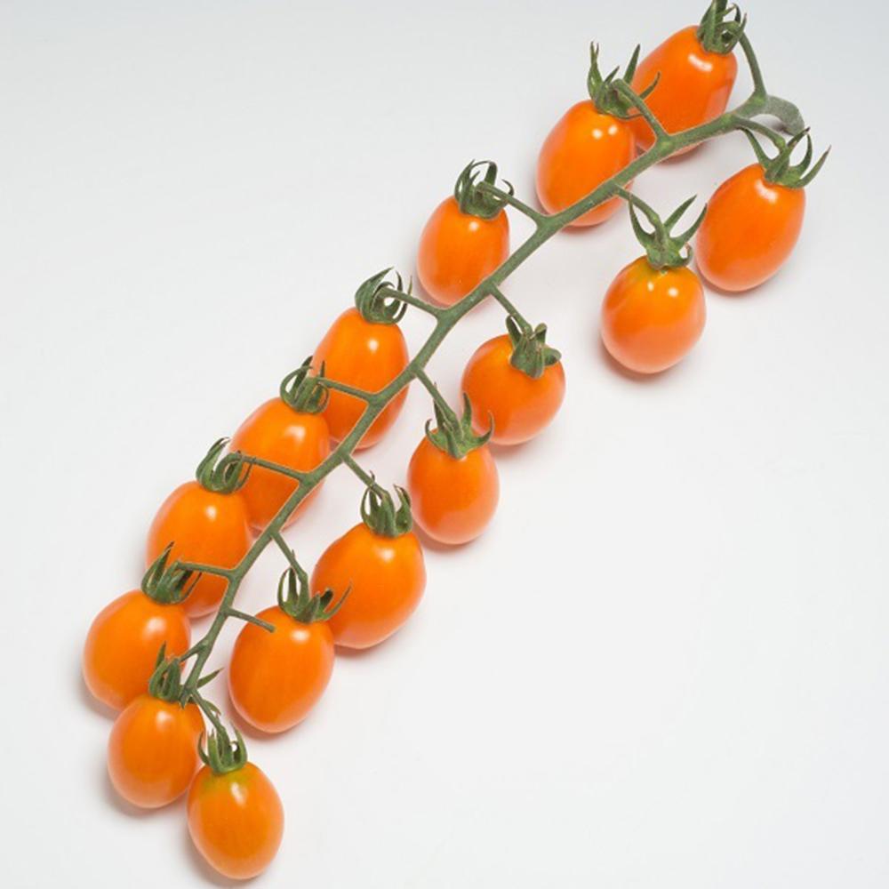 Vegetables Dattorange F1