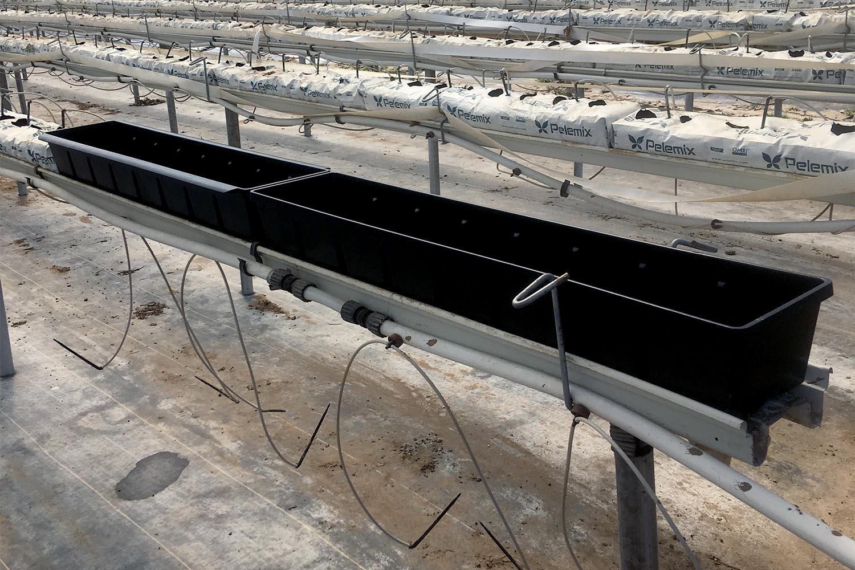 California-Erdbeer-Substratbehälter Beekenkamp